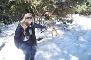 WINTER:  Surprise!  MONKEYS!  These little guys just love hanging out in the forest...wait, something's wrong with that.