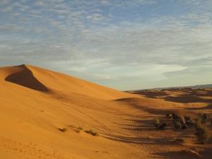 Sand dunes during the sunrise.
