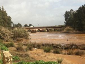 The Rio Tinto with the Roman bridge.